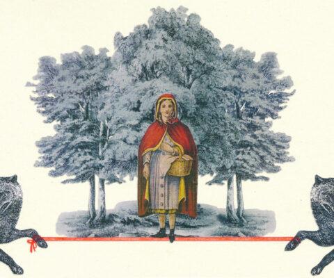 Tavola 2 - Il bosco